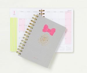 diary_s